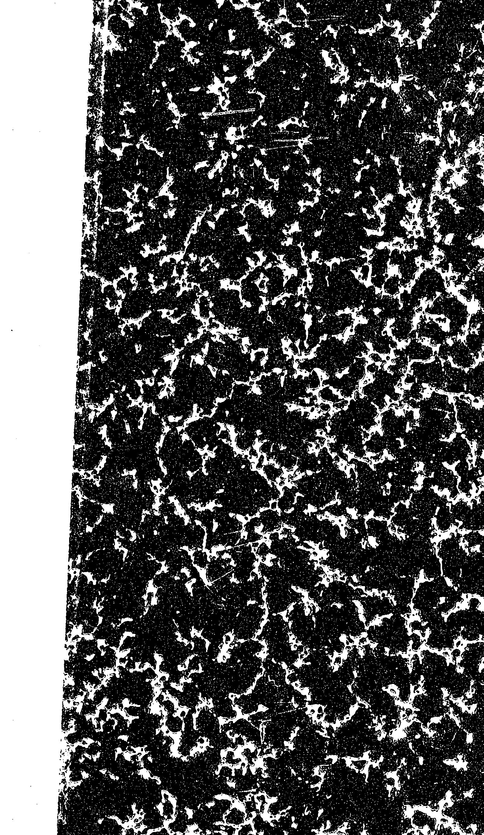 Cover of: L' effort catholique dans la France d'aujourd'hui